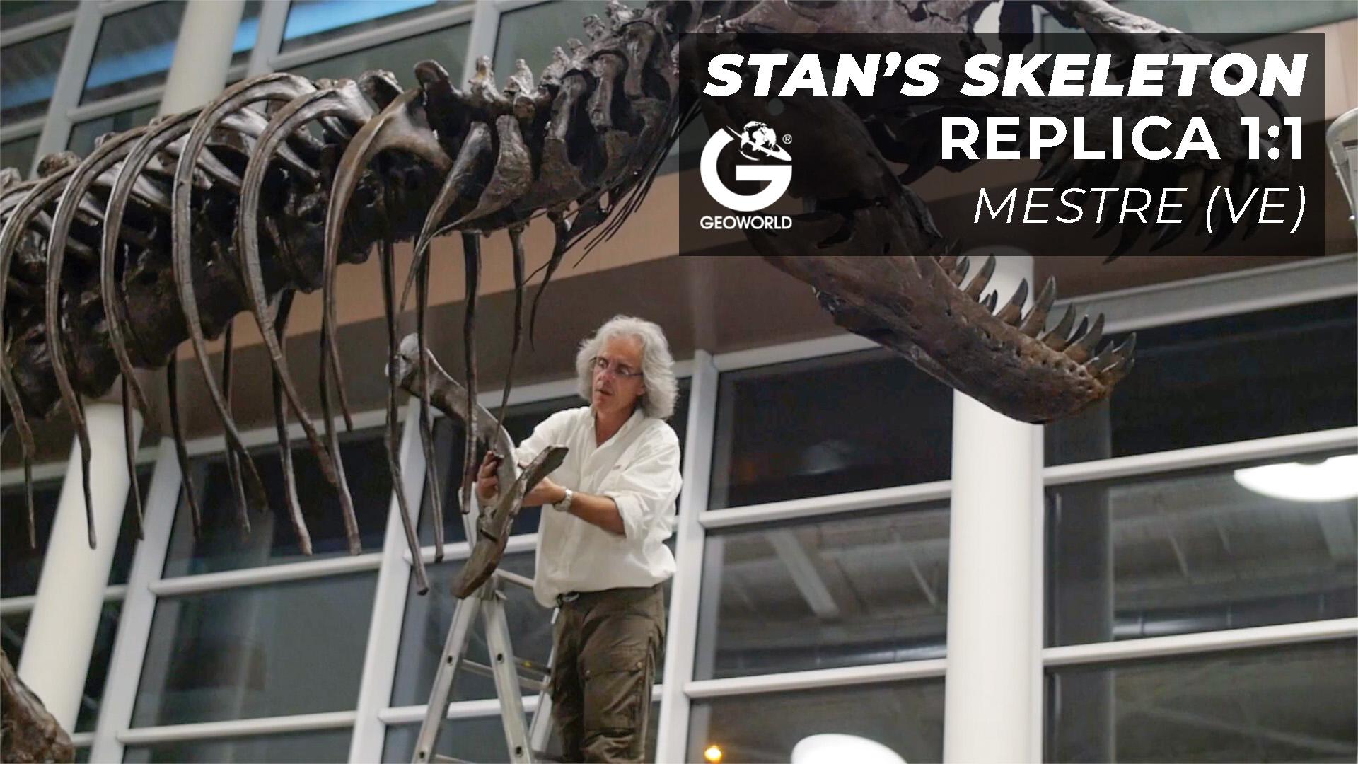 Stan's skeleton – Mestre (Venezia)