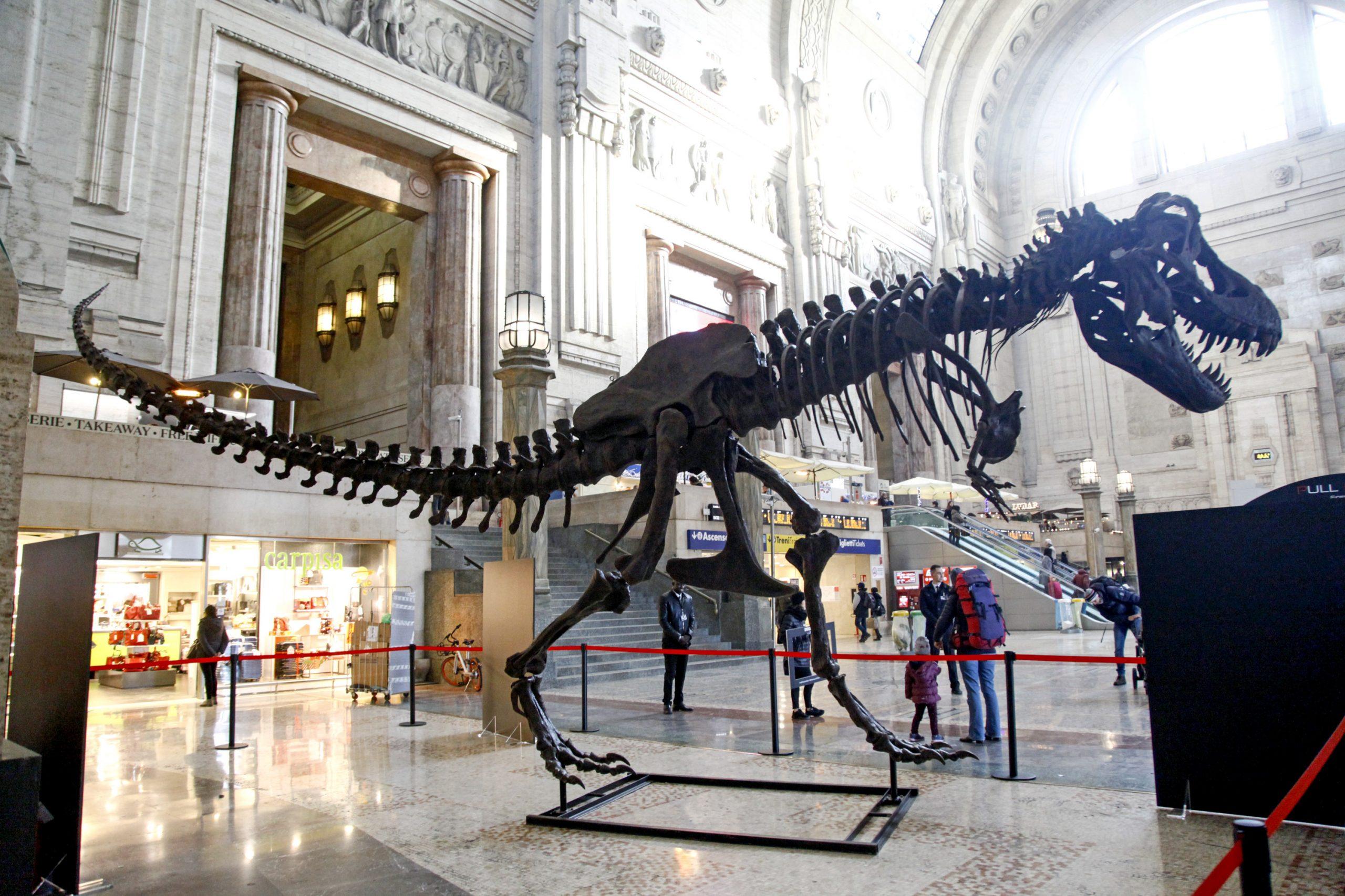Un T-Rex in stazione a Milano